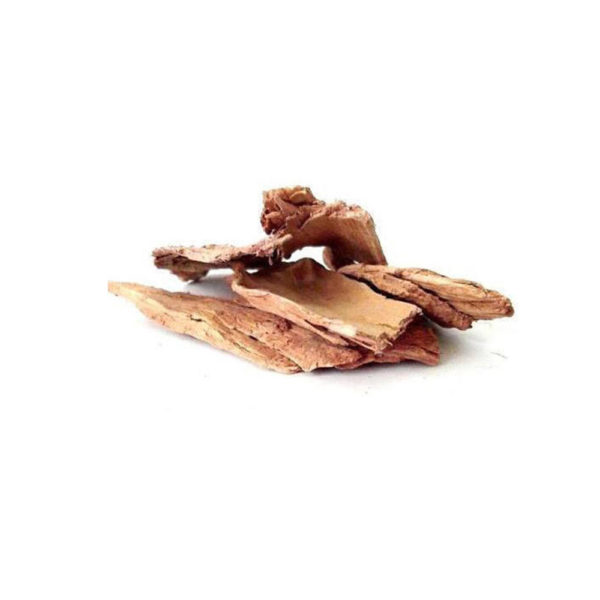 dried arjun bark wholesale traders