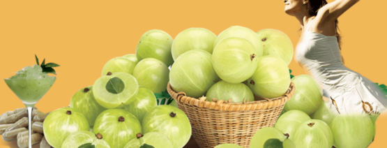 Importance of Amla in herbal industry for humans and veterinary supplement-