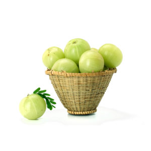 fresh amla suppliers