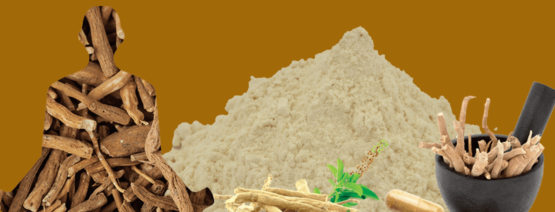 latest clinical studies on Ashwagandha