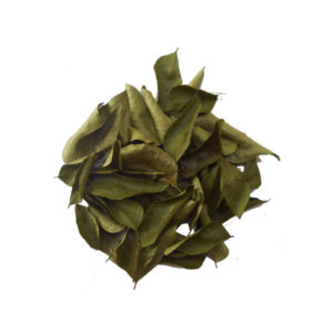 wholesale dry curry leaves