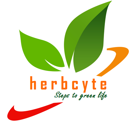 Latest Clinical Studies in Ashwagandha - HERBCYTE